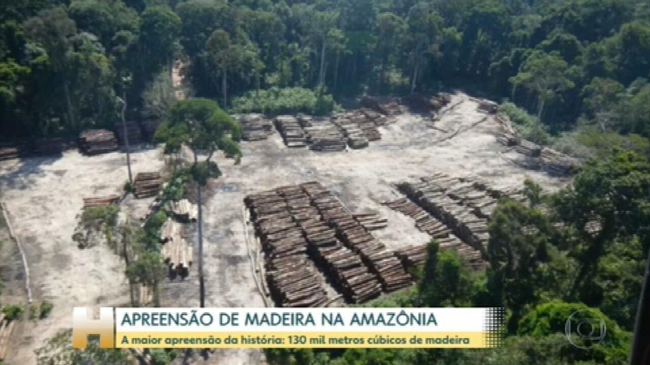Polícia Federal apreende mais de 130 mil metros cúbicos de madeira em uma operação na divisa do Pará com o Amazonas