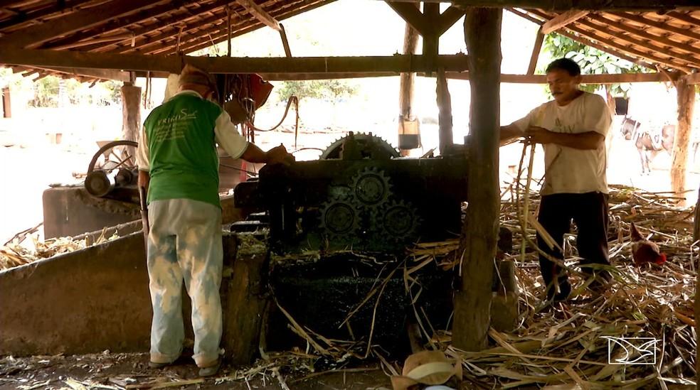 Sucupira do Norte possui atualmente mais de 80 pontos de fabricação de cachaça (Foto: Reprodução/TV Mirante)