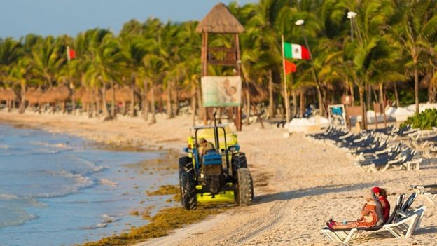 Em 2015, o México já havia recebido uma invasão de sargaço, mas não tão grande como a registrada em 2018 (Foto: Getty Images via BBC)