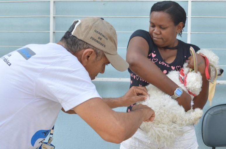Vacinação de cães e gatos contra raiva em Teresina acontece no sábado (30) nas Zonas Norte e Leste