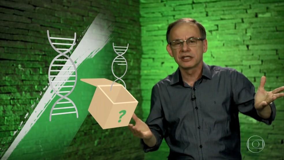Professor de biologia Fernando Beltrão explicou o processo de diferenciação celular no Projeto Educação desta quinta (11) — Foto: Reprodução/TV Globo