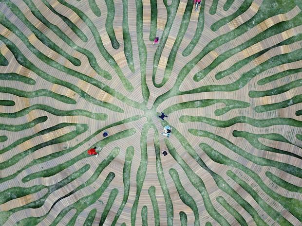 Mobiliário em parque na Coreia do Sul impressiona pelo formato de raiz  (Foto: FOTOS KYUNGSUB SHIN, DAE GANHOU LEE, KYUNG MO CHOI E YONG JU LEE ARQUITETURA)