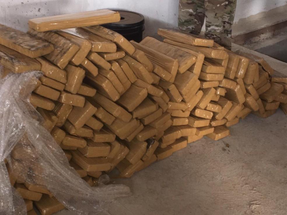 Tabletes de maconha apreendidos na operação — Foto: PF/Divulgação