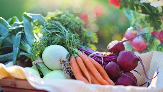 Frutas - verduras - legumes - alimentos - orgânicos - alimento saudável - alimentação (Foto: Pexels)