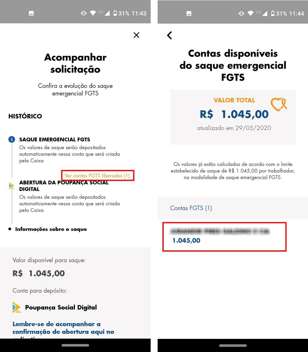 É possível visualizar todas as contas do FGTS utilizadas no pagamento do Saque Emergencial — Foto: Reprodução/Rodrigo Fernandes