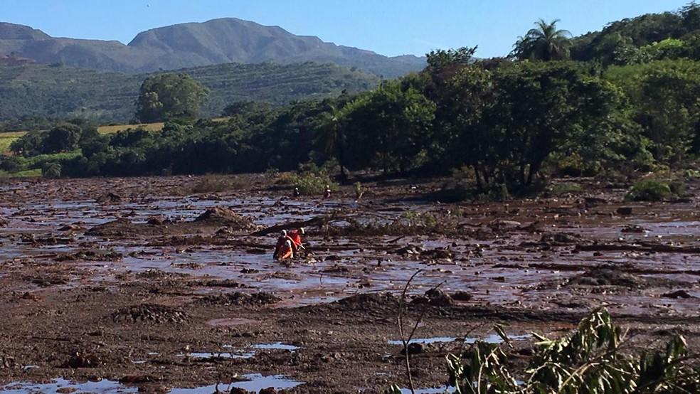Equipes localizaram corpos na região do Parque das Cachoeiras nesta quarta-feira (30) — Foto: Carlos Eduardo Alvim/TV Globo