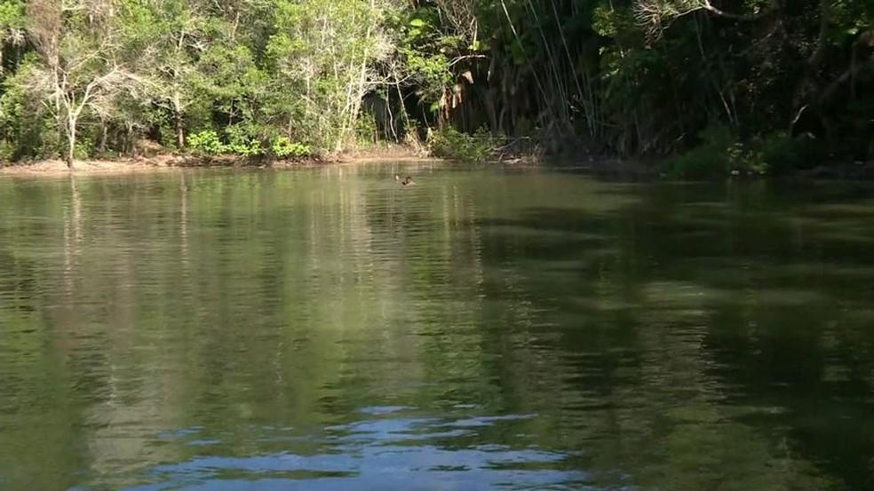 Adolescente morreu afogado em lagoa que fica em propriedade particular, em São Mateus — Foto: Reprodução/TV Gazeta