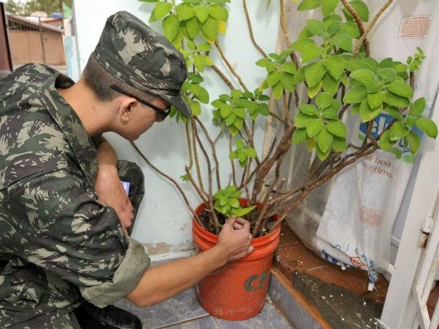Jundiaí recebe mutirão de combate à dengue nesta quinta-feira (Foto: Divulgação/ Prefeitura de Jundiaí)