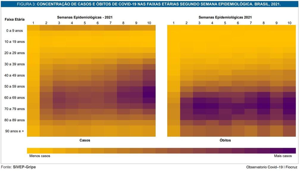 Gráfico em boletim da Fiocruz mostra concentração de casos e mortes por faixa etária — Foto: Reprodução/G1