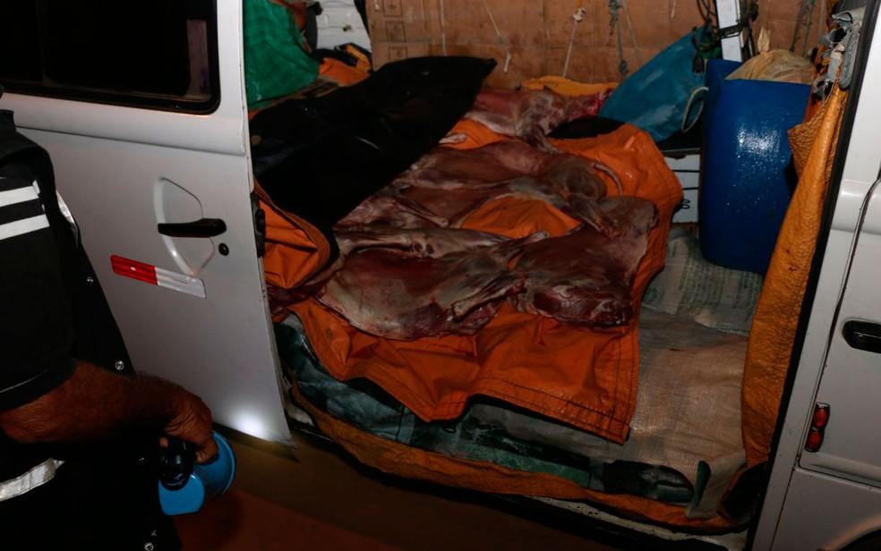 Carnes foram apreendidas dentro de kombi na Bahia (Foto: Alberto Maraux / SSP)