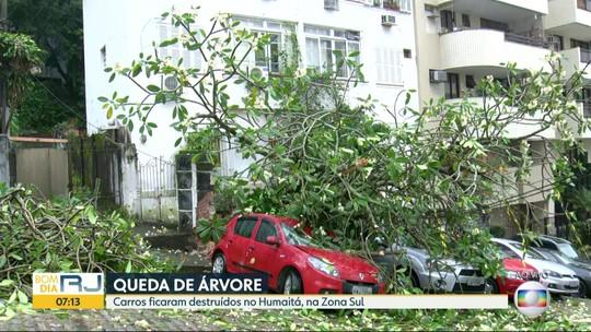 Árvore cai no Humaitá e deixa carros destruídos