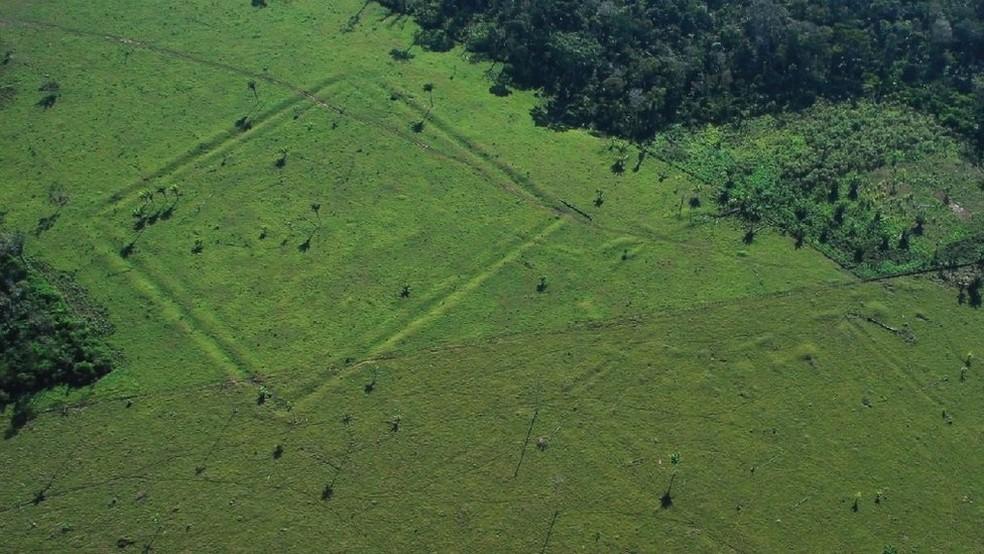 Valas em formatos geométricos chamaram a atenção dos pesquisadores em áreas desmatadas da Amazônia (Foto: University of Exeter)