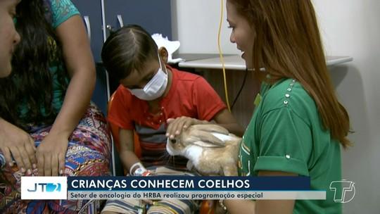 Projeto possibilita contato entre animais e crianças em tratamento no HRBA