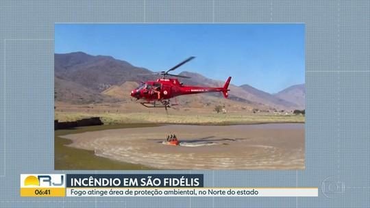 Incêndio atinge área de proteção ambiental, em São Fidélis.