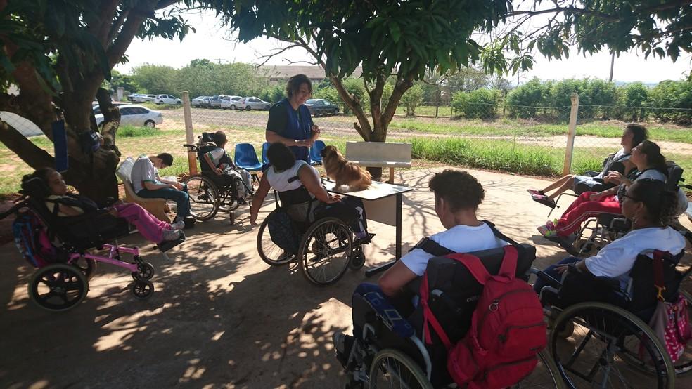 Silvia (ao centro) incentiva os alunos a tocar, brincar e interagir com o cão voluntário (Foto: Tiago de Moraes / G1)