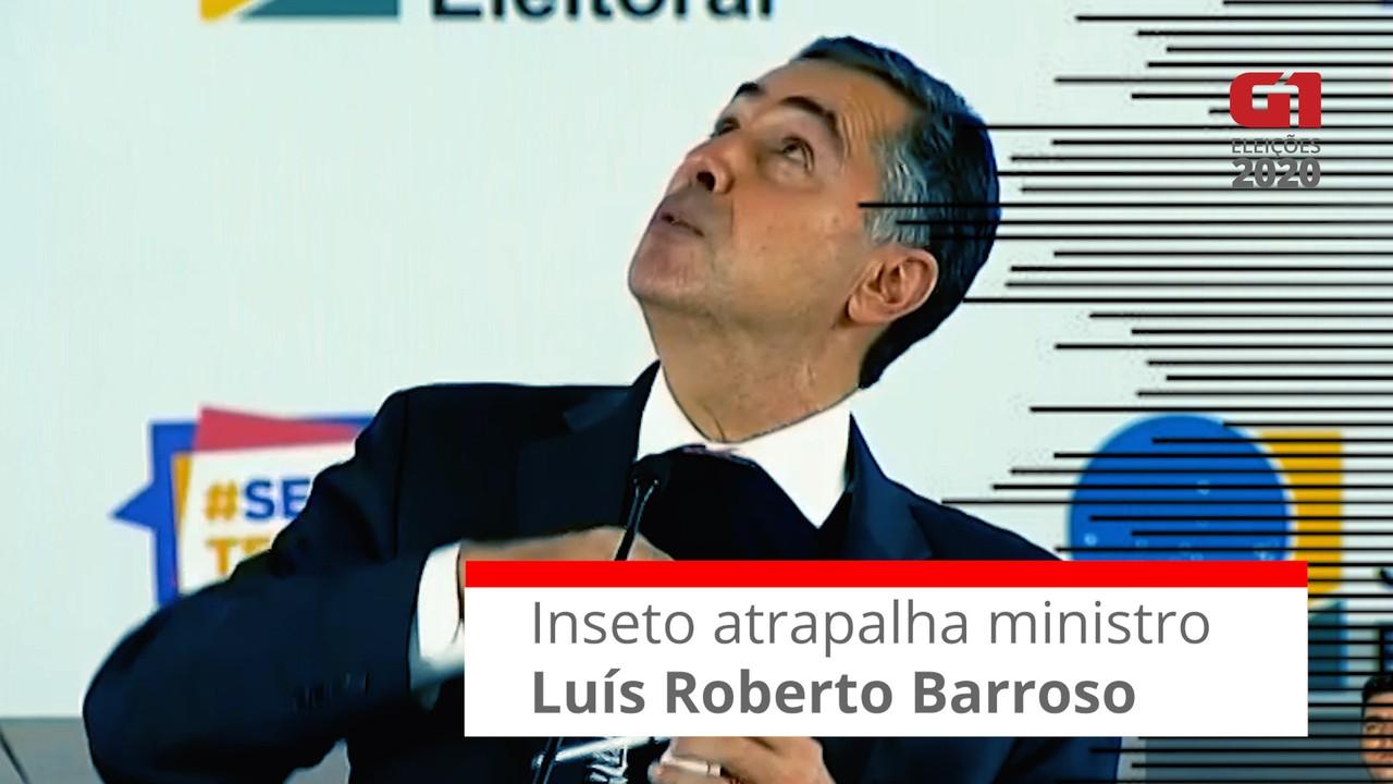 Inseto atrapalha anúncios do ministro Luís Roberto Barroso sobre andamento da votação