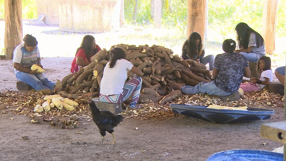 Produção de farinha a partir da mandioca é um dos meios de subsistência dos indígenas — Foto: Reprodução/Rede Amazônica