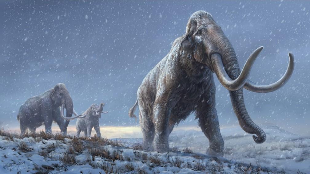 Ilustração mostra mamutes-da-estepe — Foto: Universidade de Estocolmo