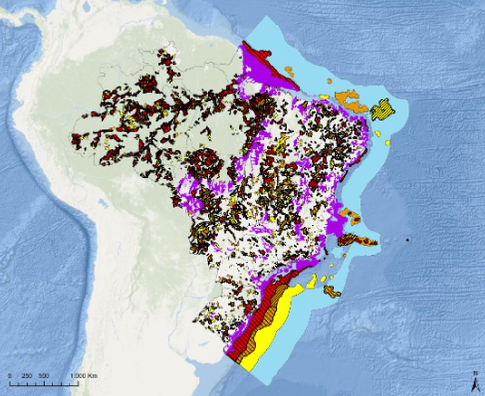 Mapa das áreas prioritárias aponta regiões sensíveis em seis biomas brasileiros — Foto: Divulgação