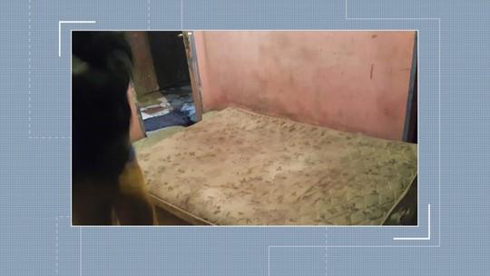 Trabalhadores são resgatados em condições análogas à escravidão em colheita de cebola em SC