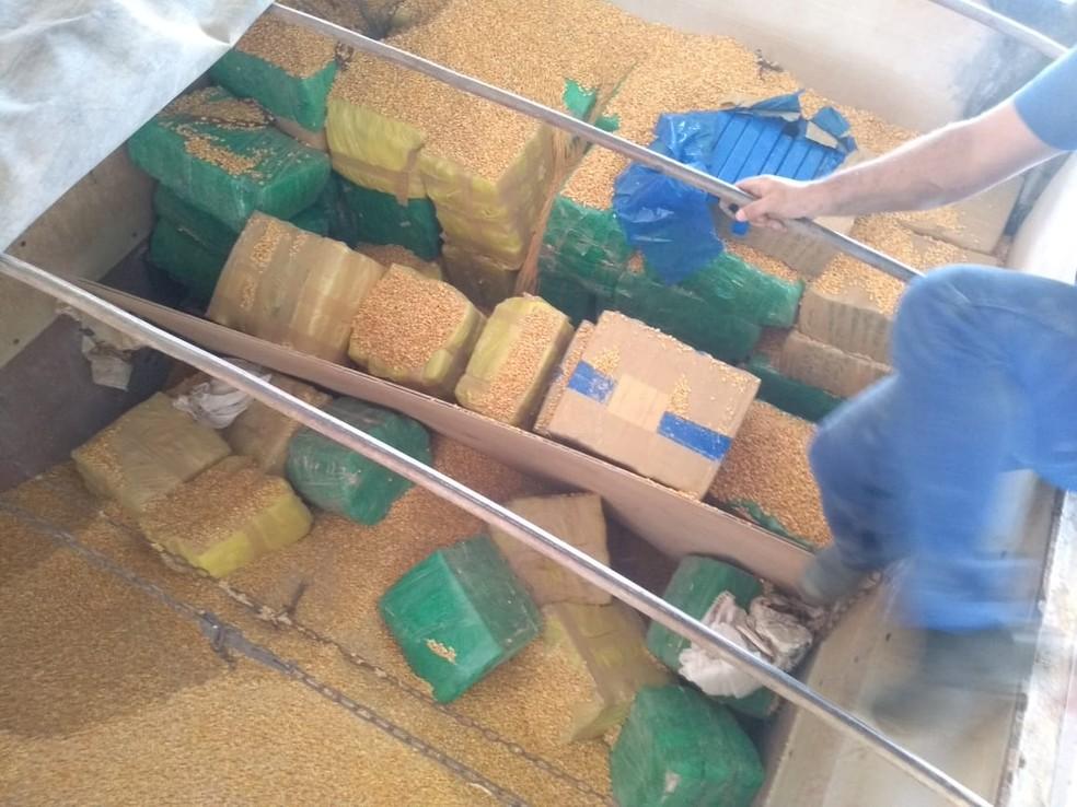 Tabletes e fardos de maconha foram encontrados em carga de bitrem durante fiscalização em rodovia de Avaré (SP) — Foto: Polícia Militar Rodoviária/Divulgação