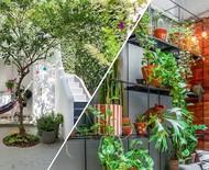 6 ideias para aproveitar ao máximo os espaços verdes
