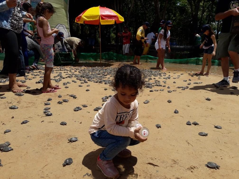 Criança brinca com tartarugas após soltura no rio Guaporé.  — Foto: Ecovale/Divulgação