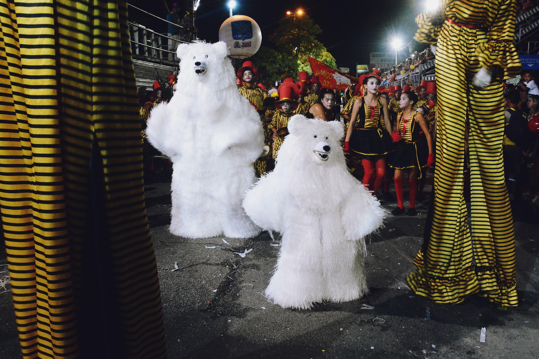 Carnaval Tradição 2020 de João Pessoa termina nesta segunda-feira com desfiles de ala ursas