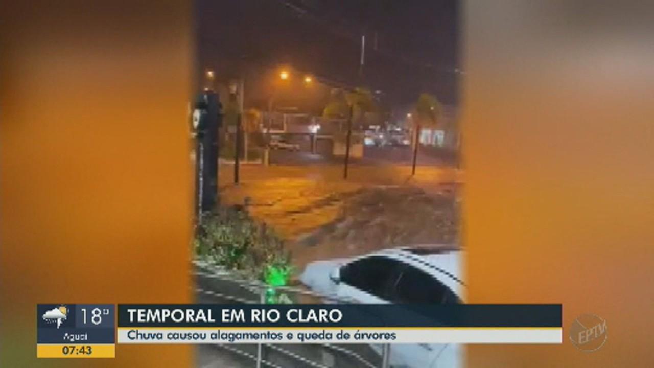 Chuva em Rio Claro causa alagamentos e queda de árvores