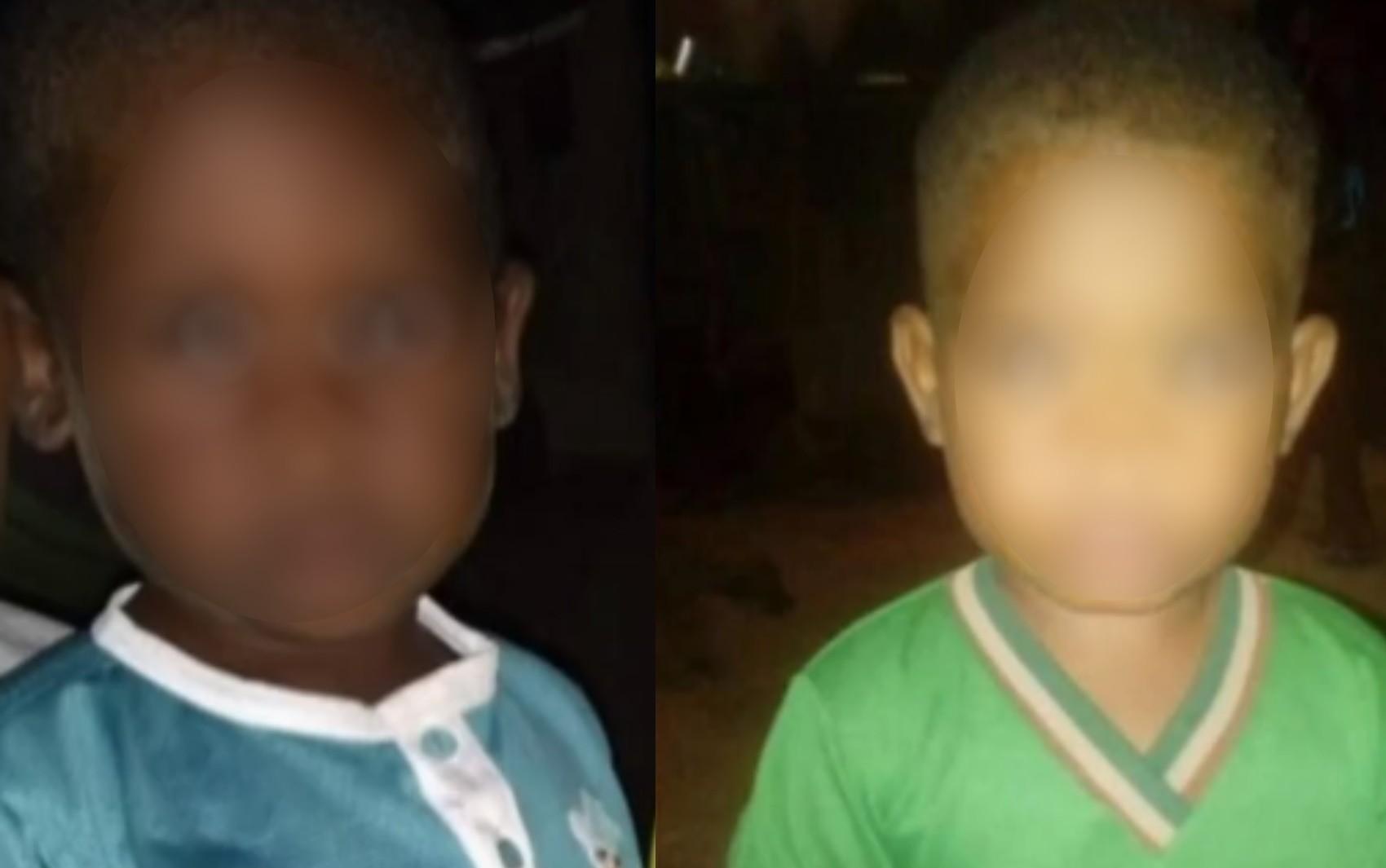 Após 24 hora de buscas, crianças que sumiram enquanto brincavam são encontradas em mata na Chapada dos Veadeiros