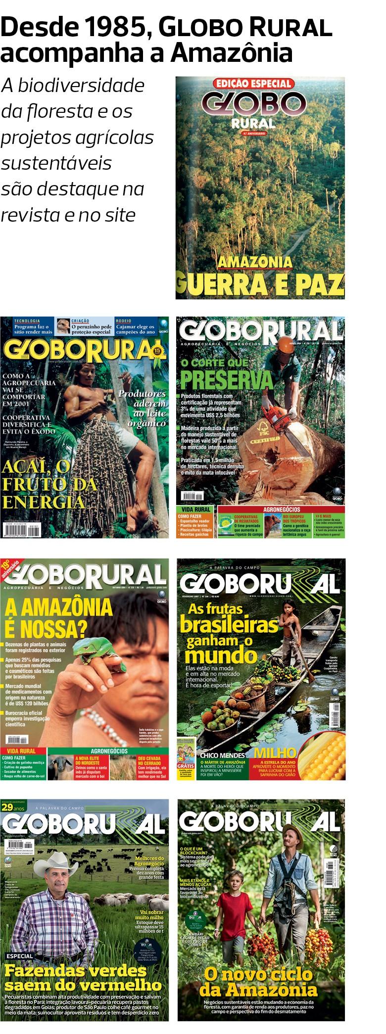 Amazônia (Foto: Fernando Martinho)