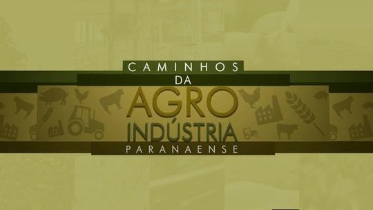 Metade do investimento das cooperativas vai para a agroindústria, diz Ocepar