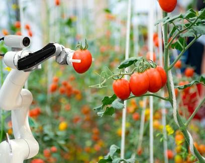 Novo estudo mapeia mercado de startups do agro no Brasil