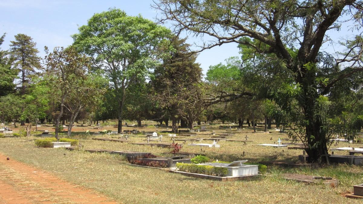Finados: cemitérios do DF abrem mais cedo, têm transporte para visitantes e recebem missas