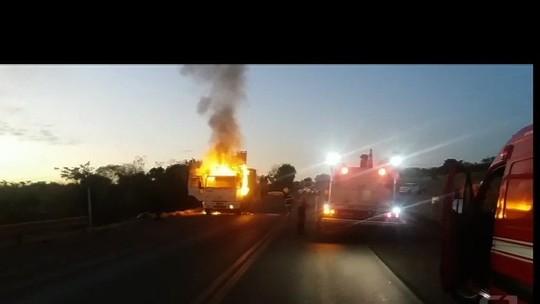 Caminhão pega fogo e provoca a morte de bois reprodutores raros na BR-153; vídeo