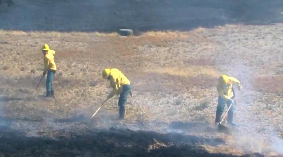 Região oeste da Bahia registrou 57 queimadas em uma semana (Foto: Reprodução/TV Oeste)