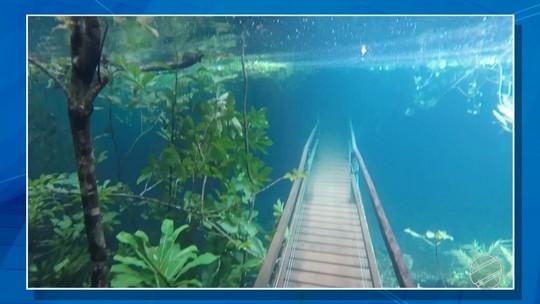 VÍDEO: Trilha fica submersa em água cristalina após chuva intensa em MS