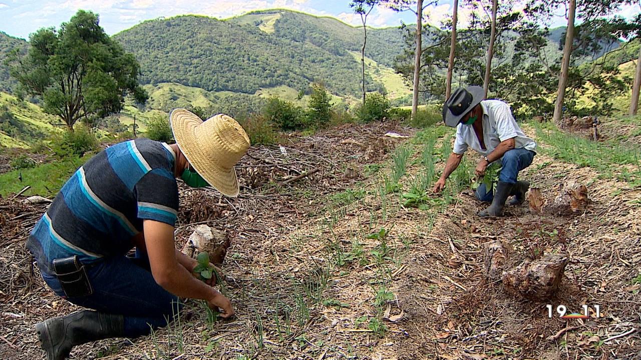 Projeto ajuda agricultores familiares em São luiz do Paraitinga