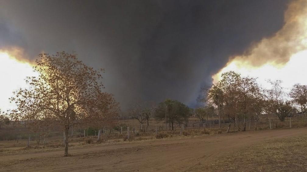 Fumaça de incêndio florestal na província de Santa Cruz, na Bolívia, na segunda-feira (9) — Foto: STR/AFP/Santa Cruz Province Government