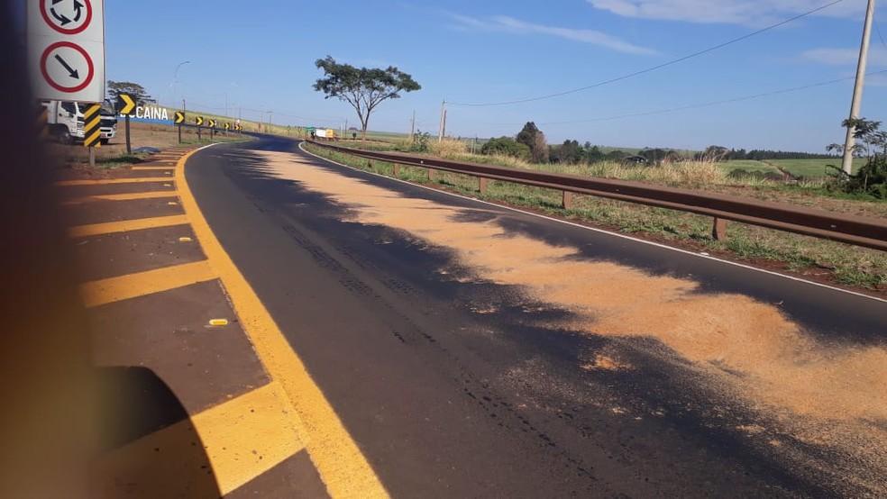 Concessionária que administra a via foi acionada e jogou pó de serra pra limpar a pista (Foto: Arquivo Pessoal)