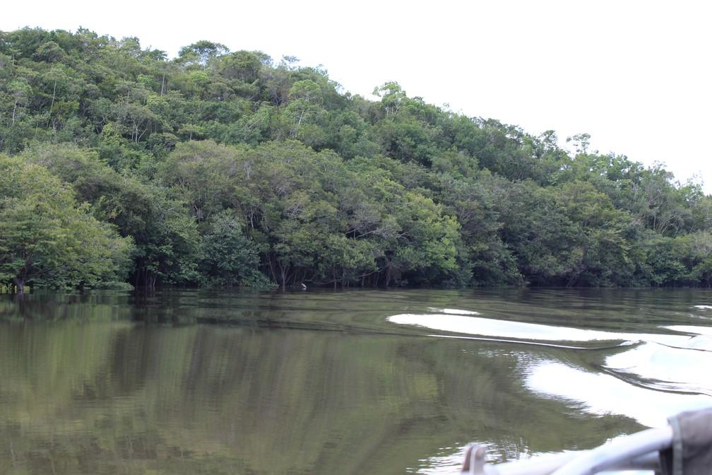 Para chegar a ilha o percurso é realizado por meio de embarcação fluvial  — Foto: Jheniffer Núbia/G1
