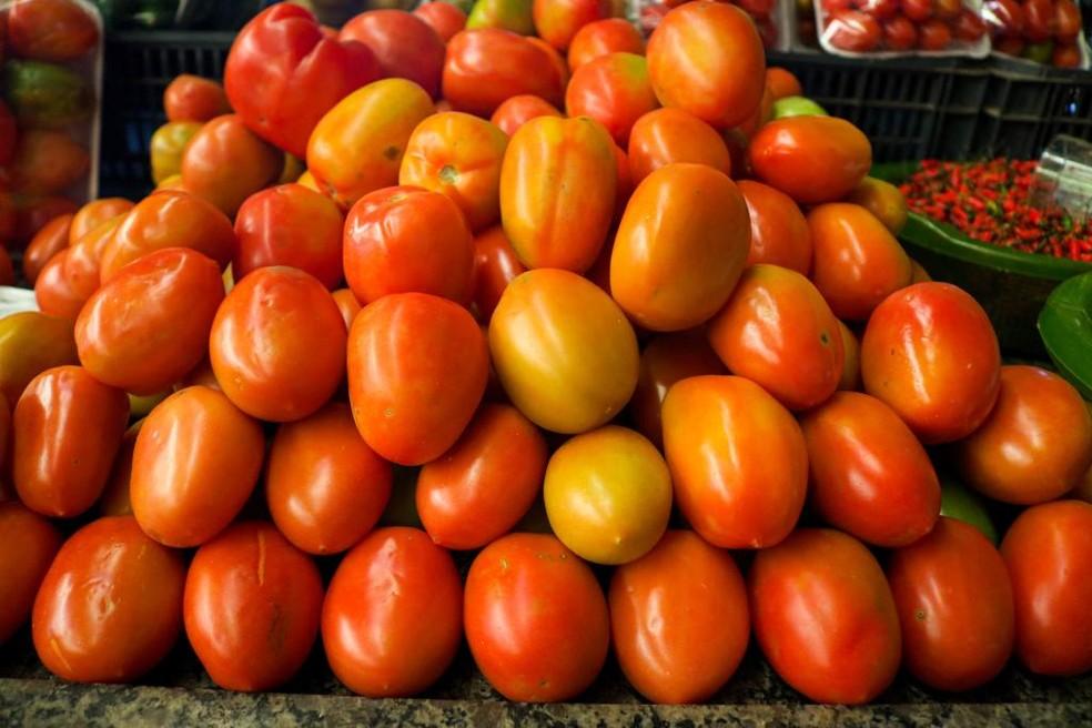 Preço do tomate aumenta quase 17% no último mês na Grande Belém, aponta Dieese — Foto:  Lucas Diego