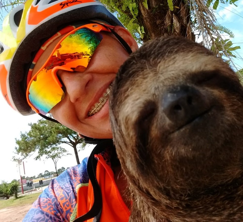 Preguiça foi encontrada por ciclista em rodovia no extremo sul da Bahia (Foto: Rita Barbosa/ Arquivo Pessoal)