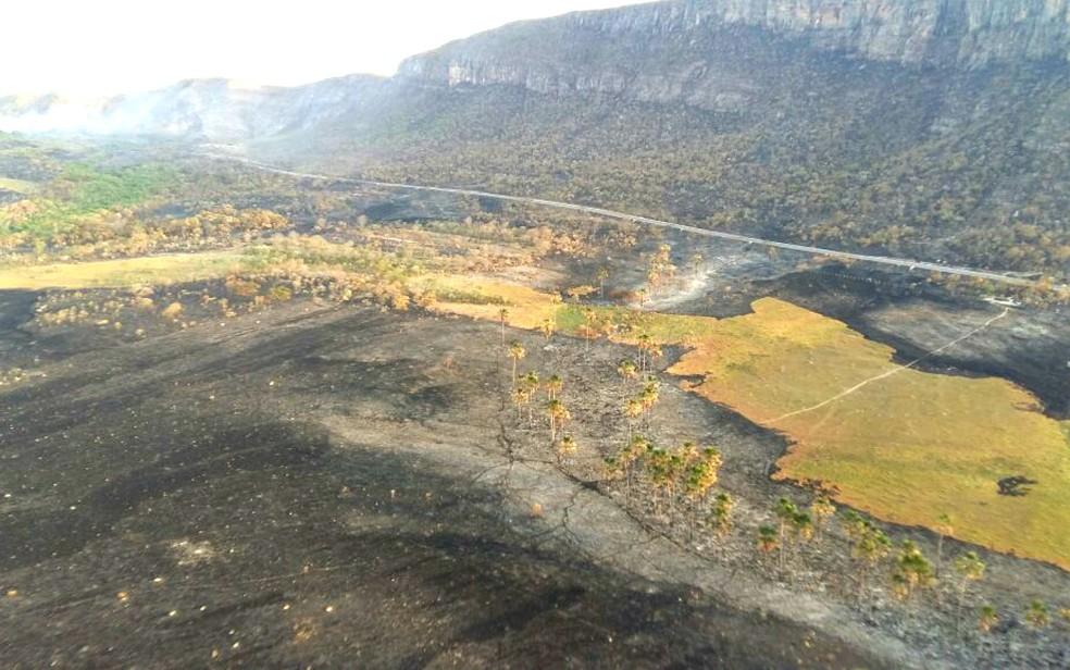 Chapada dos Veadeiros vai receber recursos a partir de novas regras de compensação ambiental. Parque foi atingido por incêndio em outubro deste ano (Foto: ICMBio/Divulgação)
