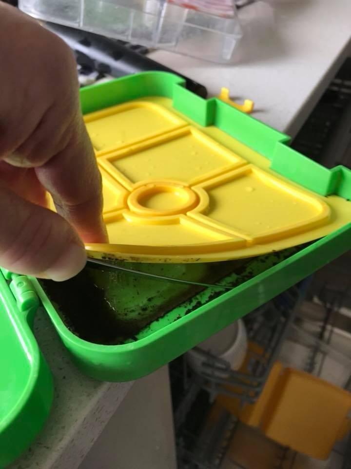 """A mãe se surpreendeu com a presença de mofo em um compartimento """"secreto"""" da lancheira (Foto: Reprodução Facebook)"""