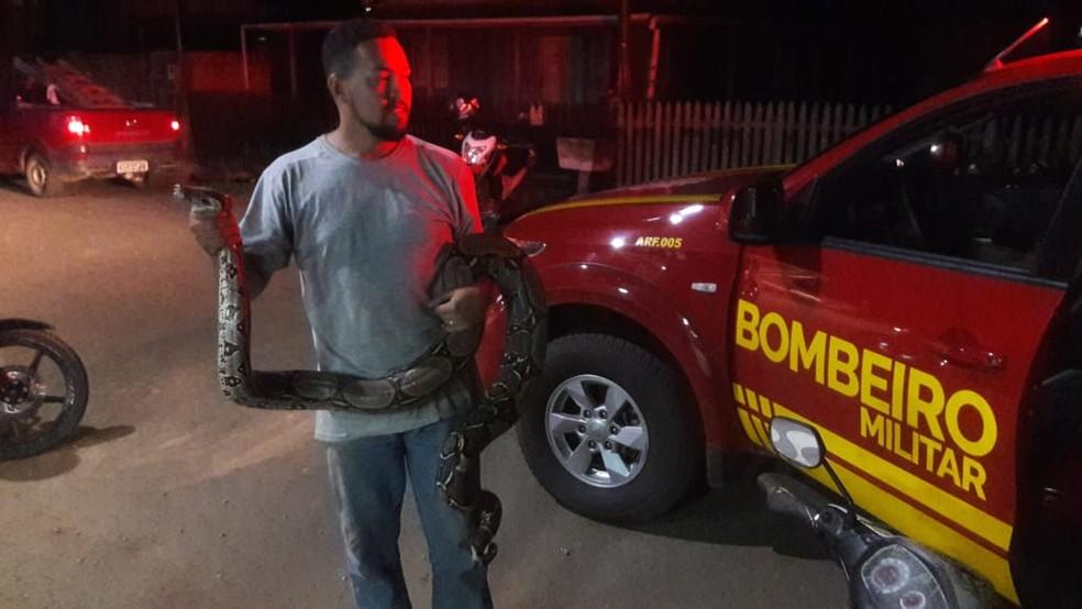 Motorista encontra jiboia de mais de 4 metros em estrada do AC e aciona bombeiros para resgate — Foto: Fernando Oliveira/Arquivo pessoal