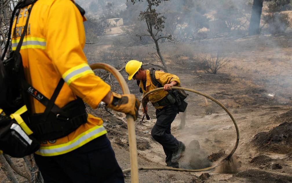 Bombeiros extinguem foco de Incêndio do Lago, em área montanhosa da Floresta Nacional Angeles, ao norte de Los Angeles, na Califórnia, na quinta-feira (13) — Foto: Reuters/Patrick T. Fallon