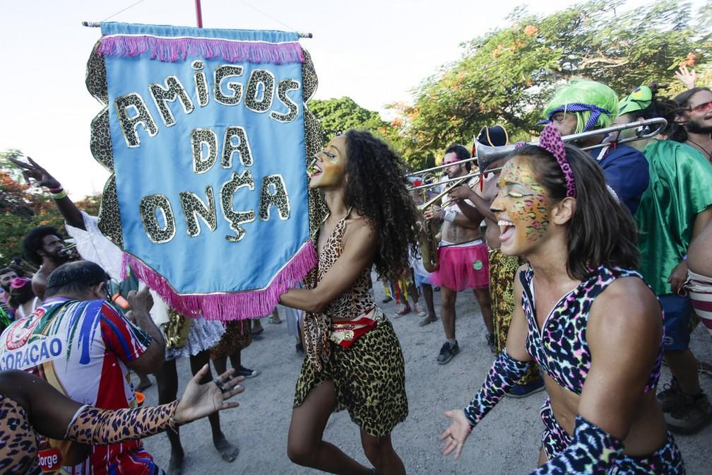 Fotografia do Bloco Amigos da Onça em abril de 2019  — Foto: Gabriel Monteiro/Riotur
