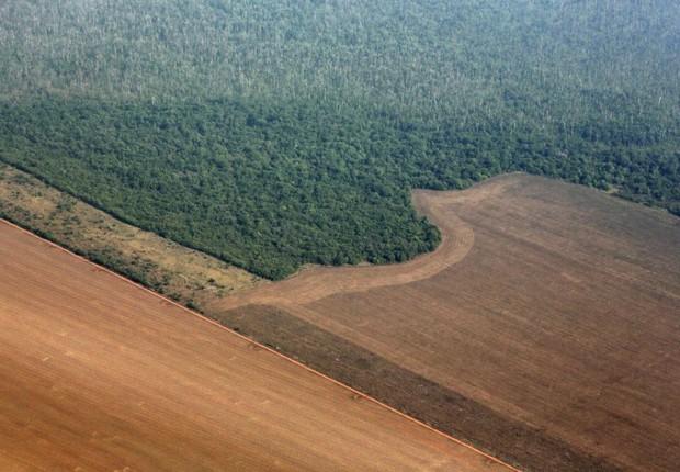Vista aérea de terra sendo preparada para plantação de soja em Mato Grosso - agricultura - amazônia - meio ambiente (Foto: Paulo Whitaker/REuters)