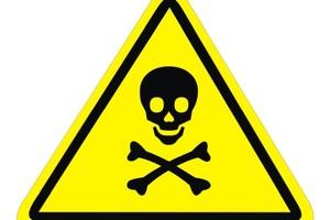 Perigo (Foto: Arquivo Google)